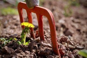 5 Wege zur Resilienz